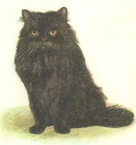 Персидские черные кошки фото