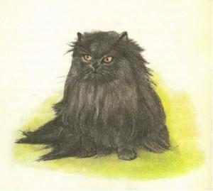 Персидские кошки фото