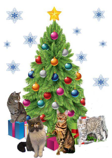 Новый год кошки