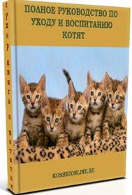 Книга о котятах